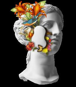 Vênus Floral