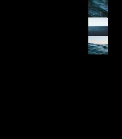 OCEANS COLOR